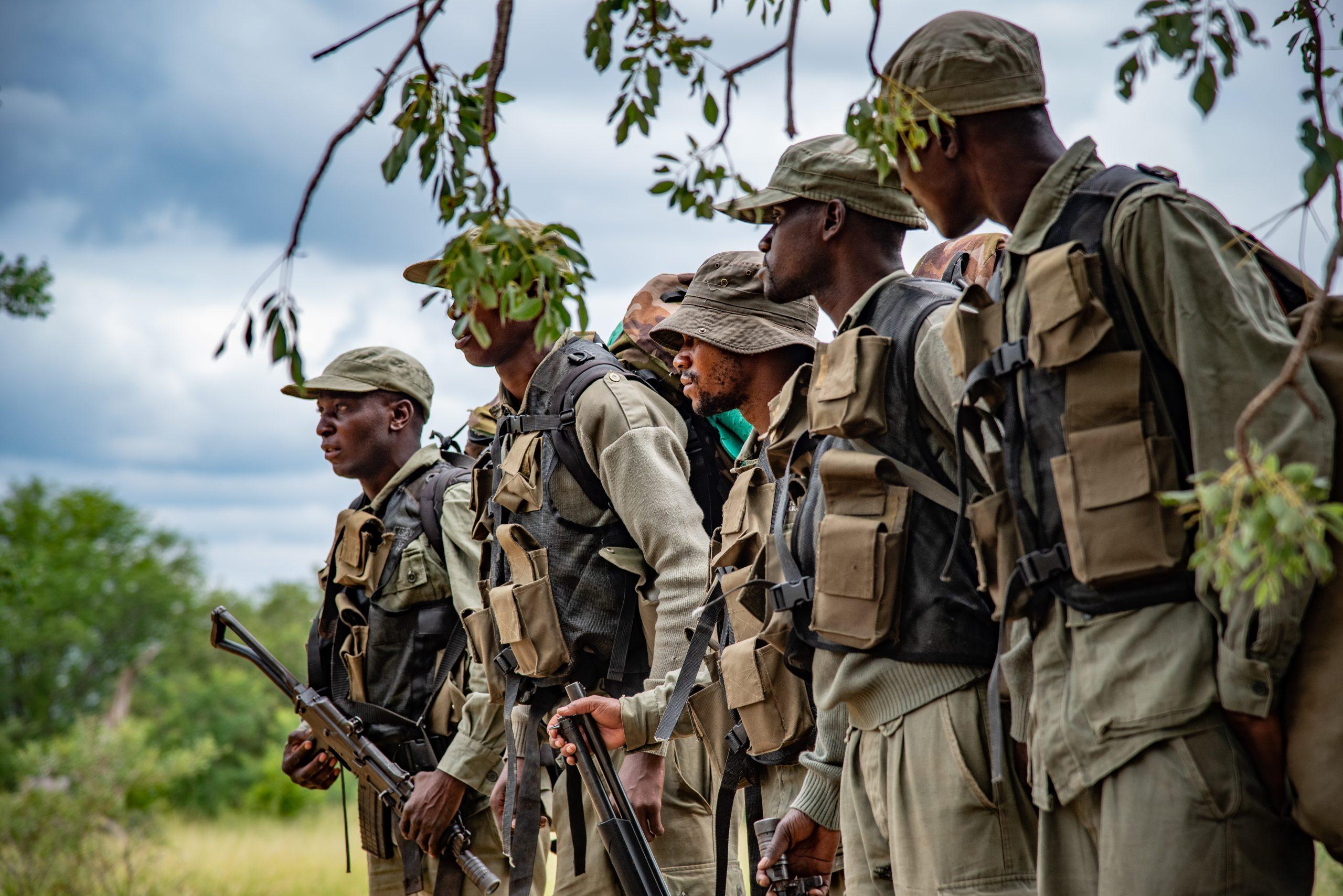 Limpopo National Park – Peace Parks Foundation