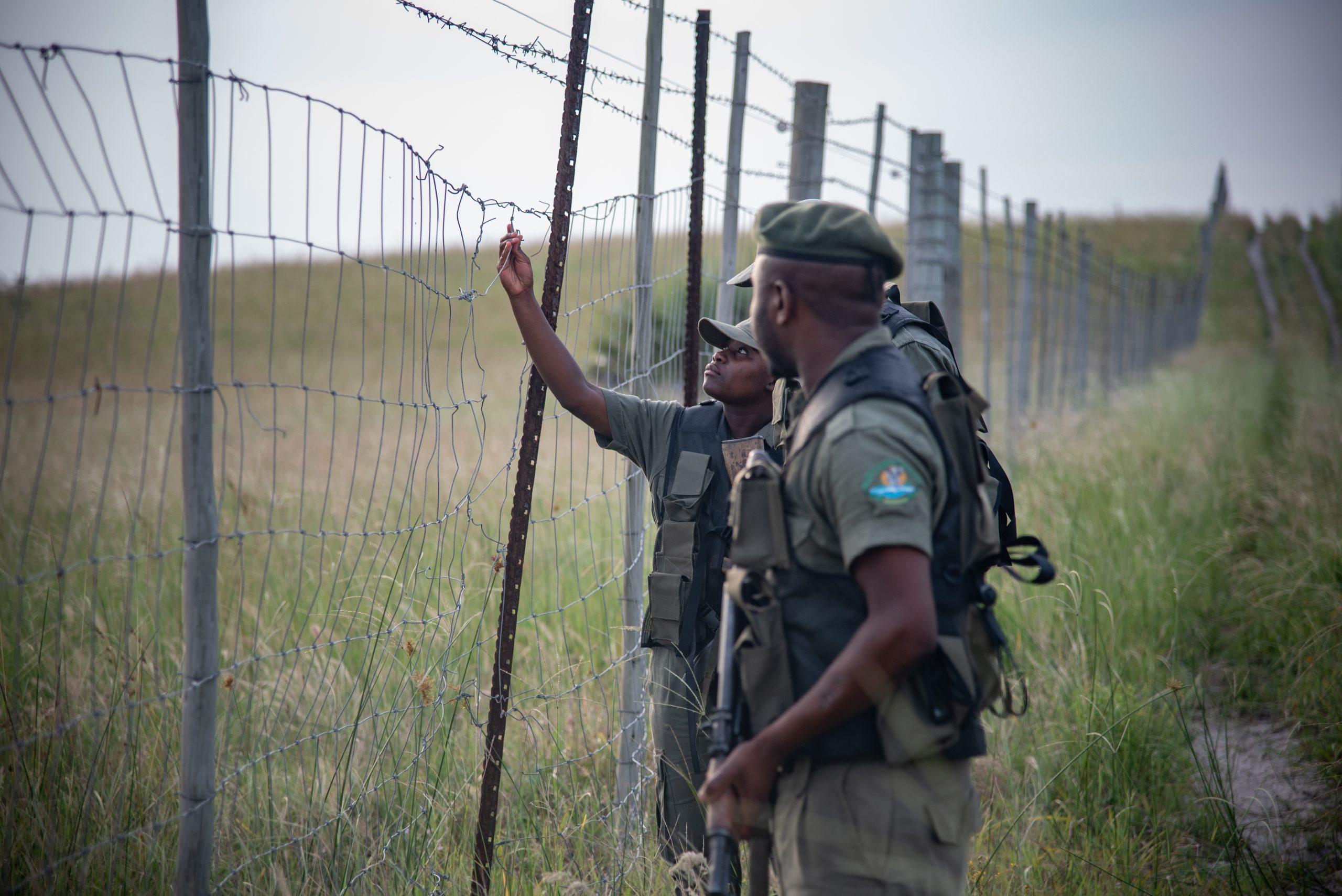 Maputo Special Reserve – Peace Parks Foundation