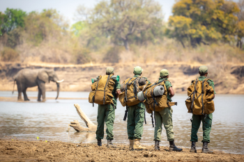 South Luangwa National Park – Conservation South Luangwa