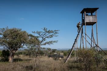 Laikipia Ranches & Conservancies – Lion Landscapes