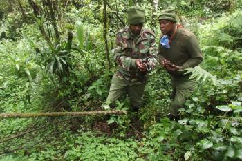 Mau Eburu Forest Reserve – Rhino Ark