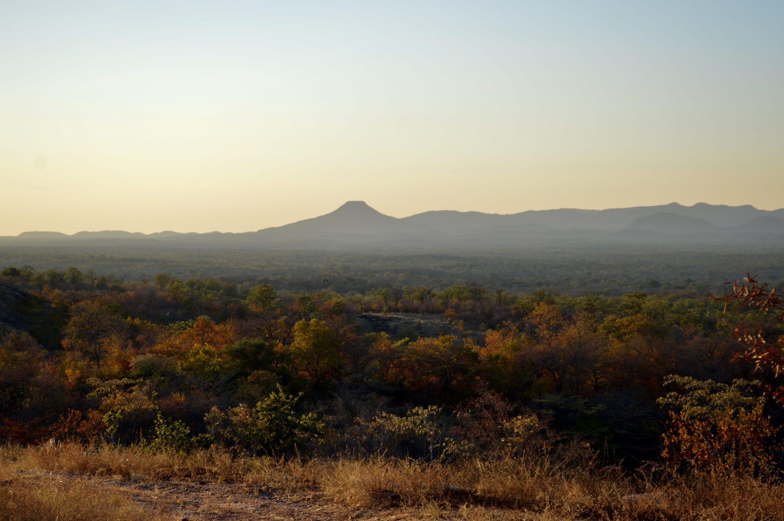 Chewore South – The Tashinga Initiative