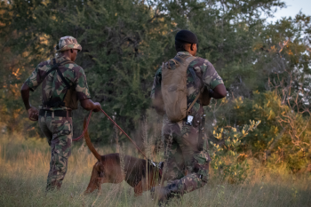 Karingani Game Reserve – African Community & Conservation Foundation