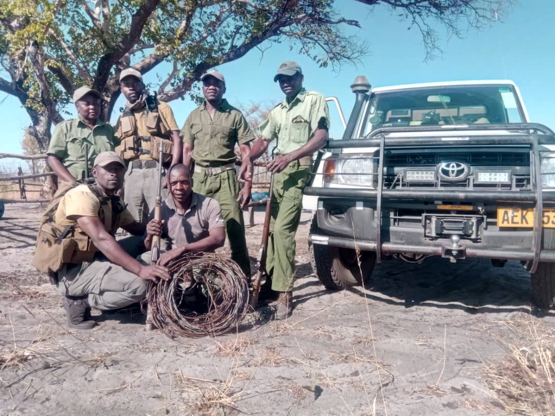 Hwange National Park – Conservation and Wildlife Fund