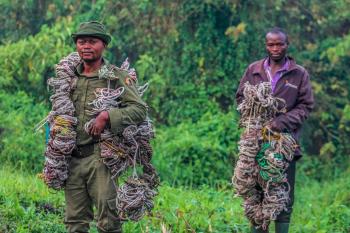 Virunga National Park – Virunga Foundation