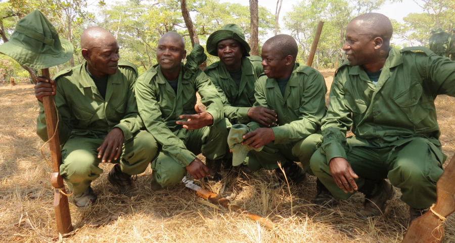 Selous-Niassa Wildlife Corridor – WWF Tanzania