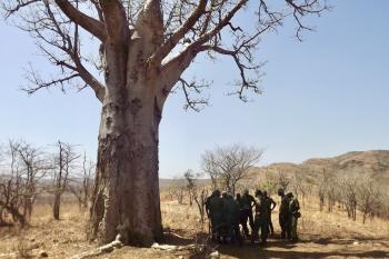 Hurungwe Safari Area – Tashinga Initiative